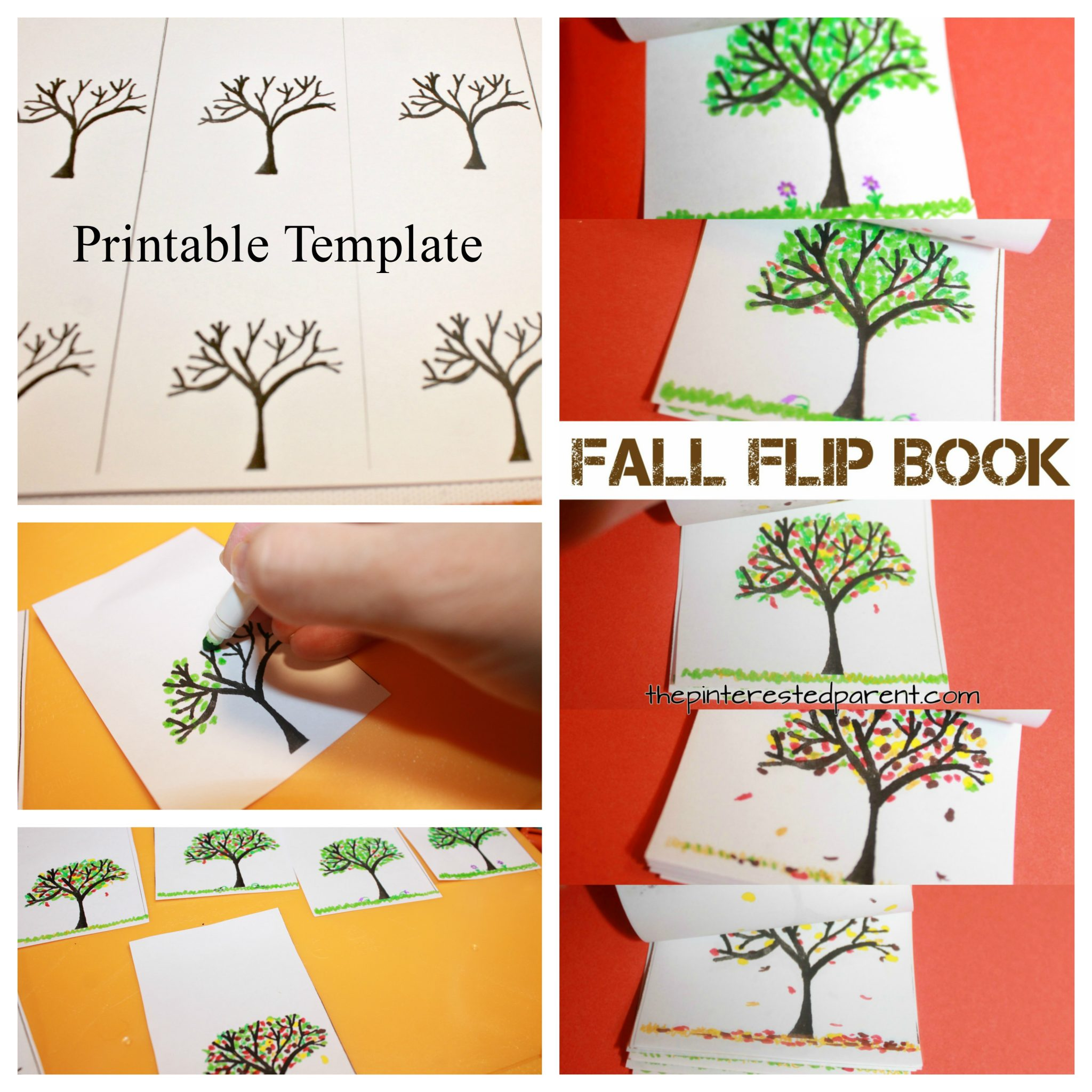 fall tree flip book the pinterested parent. Black Bedroom Furniture Sets. Home Design Ideas